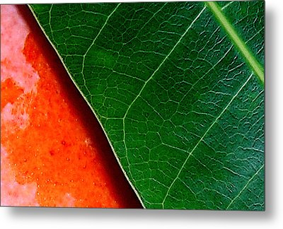 Color Me Mango Sweet And Spicy Metal Print by James Temple