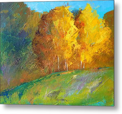 Color Metal Print by Nancy Merkle