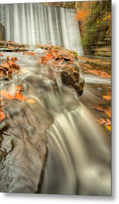 Color Of Autumn Metal Print
