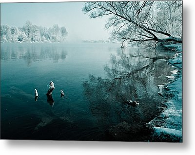Color Of Ice Metal Print by Davorin Mance