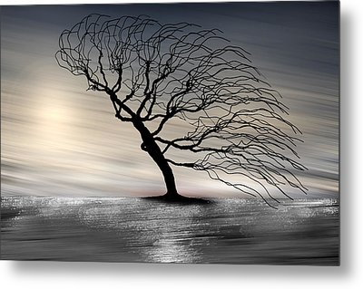 Color Of The Wind Metal Print by Gray  Artus