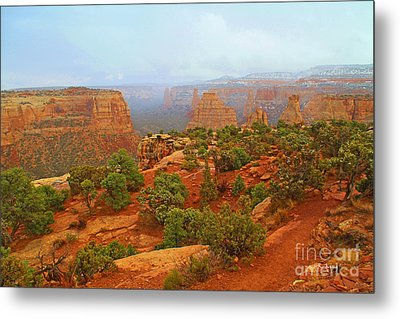 Colorado Natl Monument Snow Coming Down The Canyon Metal Print