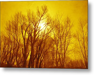 Colorado Sky Metal Print