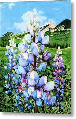 Metal Print featuring the painting Colorado Summer Blues by Barbara Jewell