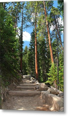 Colorado Trail Metal Print