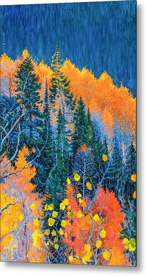 Colorado Trees At Fall Metal Print