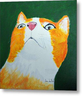 Colorcat 8 Metal Print by Lou Belcher