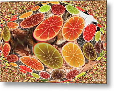 Colorful And Fasentenreich Metal Print