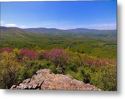 Colorful Blue Ridge Spring Metal Print