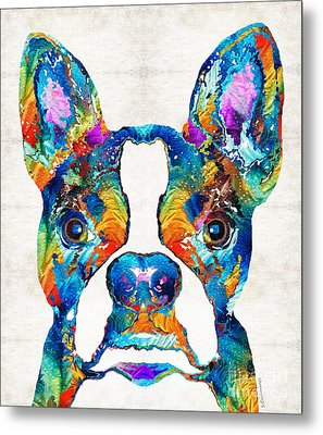 Colorful Boston Terrier Dog Pop Art - Sharon Cummings Metal Print by Sharon Cummings