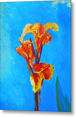 Colorful Canna Metal Print by Margaret Saheed