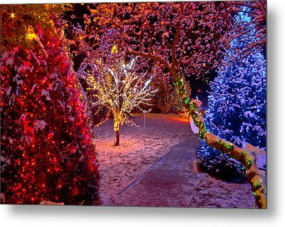 Colorful Christmas Lights On Trees Metal Print by Brch Photography