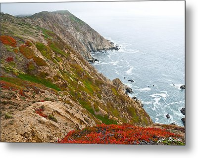 Metal Print featuring the photograph Colorful Cliffs At Point Reyes by Jeff Goulden