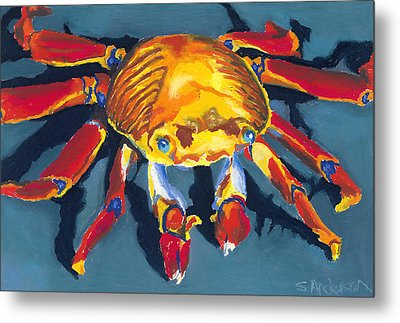 Colorful Crab Metal Print by Stephen Anderson