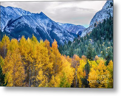 Colorful Crested Butte Colorado Metal Print by James BO  Insogna