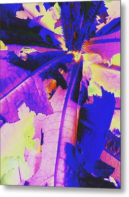 Metal Print featuring the photograph Colorful Disguise  by Diane Miller