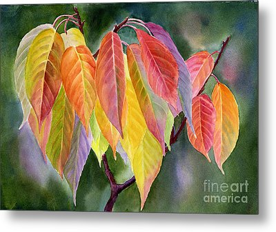 Colorful Fall Leaves With Background Metal Print by Sharon Freeman