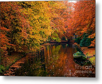Metal Print featuring the photograph Colorful Forest by Boon Mee