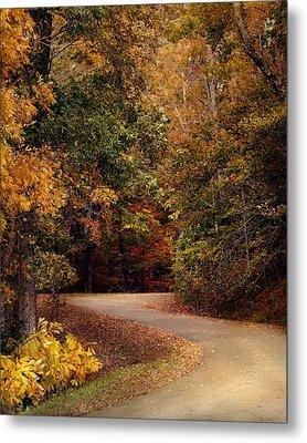 Colorful Journey - Autumn Scene Metal Print by Jai Johnson