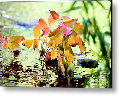 Colorful Leaves Metal Print