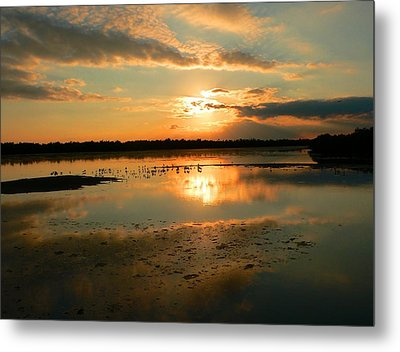 Metal Print featuring the photograph Colorful Light by Rosalie Scanlon