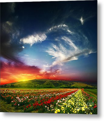 Colorful Nature Metal Print by Boon Mee