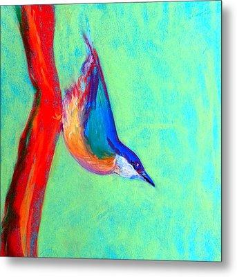 Colorful Nuthatch Bird Metal Print