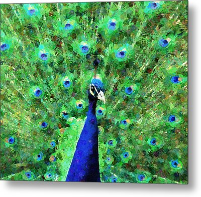 Colorful Peacock Expressionism Metal Print