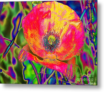 Colorful Poppy Metal Print by Carol Lynch