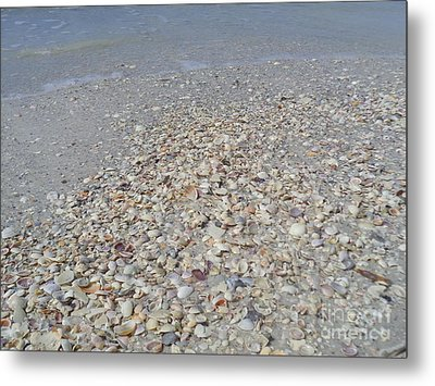 Colorful Shells At The Water's Edge Metal Print by Jeanne Forsythe