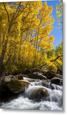 Colors And The Cascades Of South Fork Bishop Creek Metal Print by Joe Doherty
