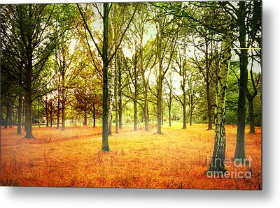 Metal Print featuring the photograph Colors Cool by Boon Mee
