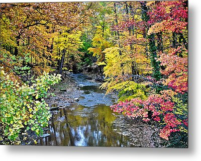Colors Galore Metal Print by Frozen in Time Fine Art Photography