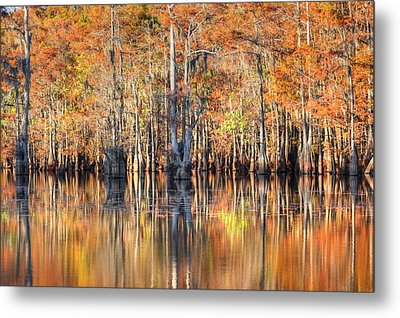Colors Of Autumn Metal Print by Ester  Rogers