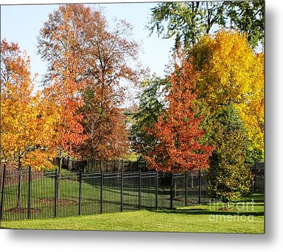 Metal Print featuring the photograph Colors Of Fall by Judy Palkimas
