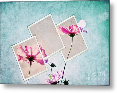 Colors Of Nature Metal Print by Angela Doelling AD DESIGN Photo and PhotoArt