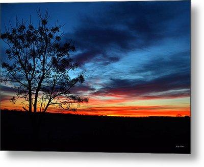 Colors Of Nature - Sunrise 001 Metal Print