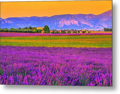 Colors Of Provence Metal Print by Midori Chan