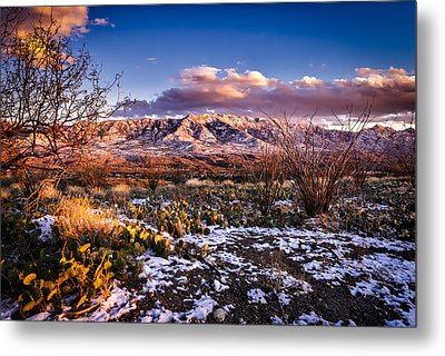 Colors Of Winter Metal Print by Mark Myhaver