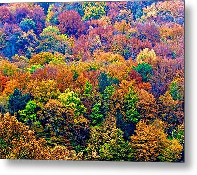 Colors To Winter 2 Metal Print by Marc Philippe Joly