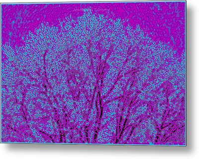 Colourful Silhouette Metal Print by Sonali Gangane