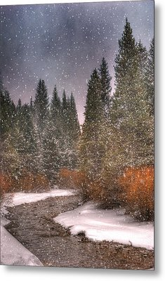 Colours Of Winter Metal Print by Juli Scalzi