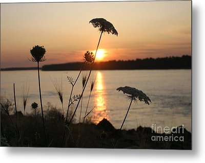 Columbia Gorge Sunset Metal Print by Cari Gesch