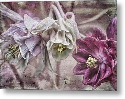 Columbine Beauty Metal Print