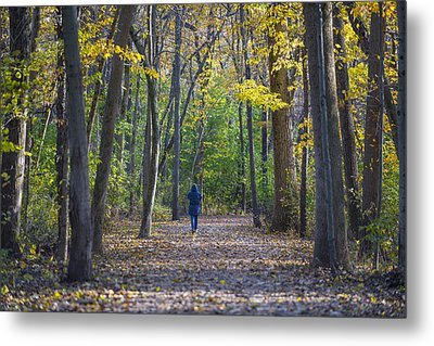 Come For A Walk Metal Print by Sebastian Musial