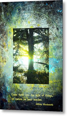 Come Into The Light With Nature Metal Print