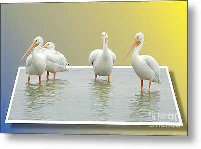 Come On In The Water Is Fine Metal Print