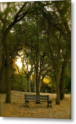 Come Sit Awhile Metal Print by Michele Myers