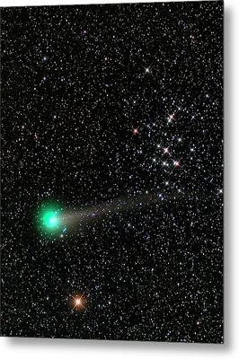 Comet C2013 R1 And Star Cluster M44 Metal Print by Damian Peach