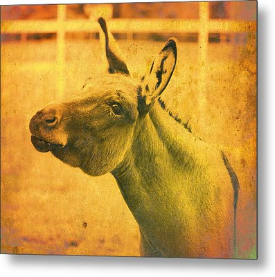 Comical Donkey Metal Print